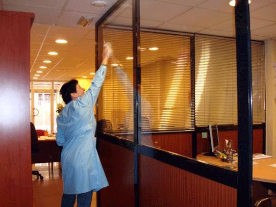 Limpieza de oficina en donostia san sebastian limpiezas for Limpieza oficinas